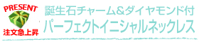 誕生石チャーム&ダイヤモンド付 パーフェクトイニシャルネックレス